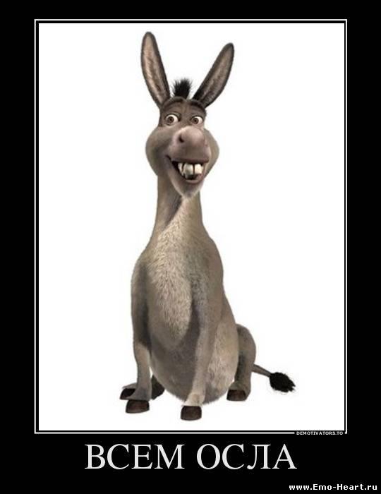 Donkeys это осел из хорошо известного мультфильма Шрек. Забавным персонаж